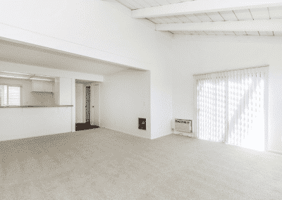 carpeted living area showing window blinds entering the natural light