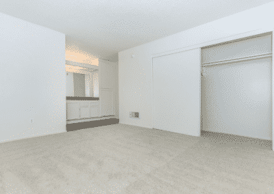 Empty closet space on a carpeted bedroom